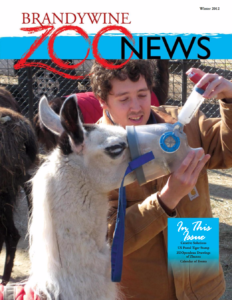 zoo_news_winter_2012_cover
