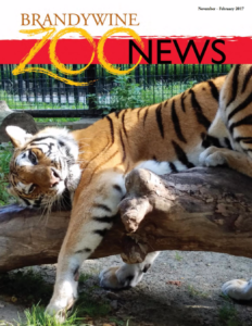 zoo_news_winter_2017_cover