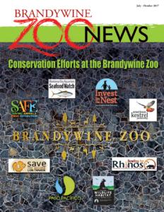 zoo-news-summer