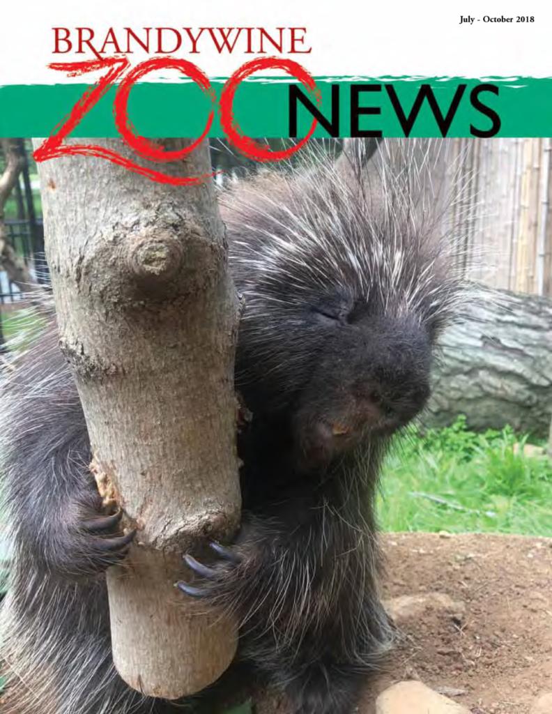 Brandywine Zoo News July October 2018