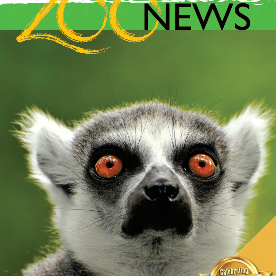 Brandywine Zoo News - October 2020 - January 2021