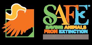 African Vultures SAFE logo